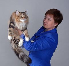Alekseeva Tatiana